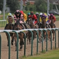 8.20 Wolverhampton: Sky Sports Racing On Sky 415 Handicap (Class 6) (3yo+ 0-65)