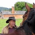 The Racing Horse E Book (Mentality)