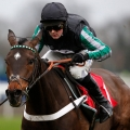1.30 Cheltenham: (Old) Sky Bet Supreme Novices' Hurdle (Grade 1) 2m87y