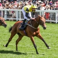 DUKE OF CAMBRIDGE STAKES (Group 2) (Fillies & Mares) 1m (Str)