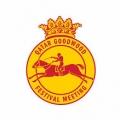Qatar Stewards' Cup (Heritage Handicap) (Class 2)