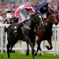Pearl Bloodstock Palace House Stakes