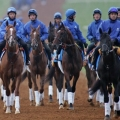 Returning Glory for Godolphin