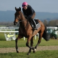 Betfred Midlands Grand National Chase (Listed) 4m1f110y