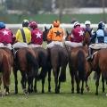 Cheltenham Racecourse Template (Saturday 25 January 2020)