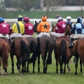 CHELTENHAM RATINGS explained