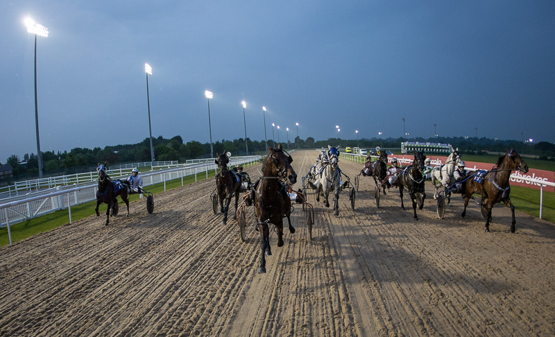 Wolverhampton Harness Racing