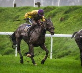 Carole's Destrier to win 2016 Coral Welsh Grand National